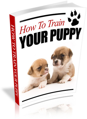 Product picture How To Train Your Puppy (PLR)