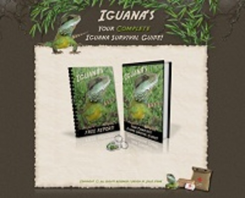 Product picture Complete Iguana Survival Guide (PU & PLR)