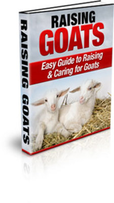 Product picture Raising Goats (PLR)